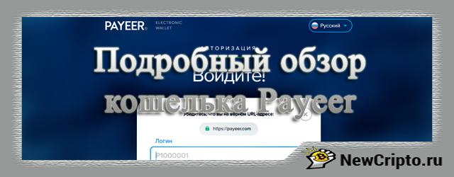 Кошелек Payeer. Подробный обзор. Регистрация, вход, отзывы, бонусы