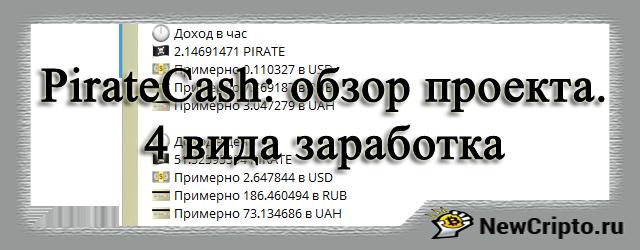 piratecash-обзор-проекта-4-вида-дохода